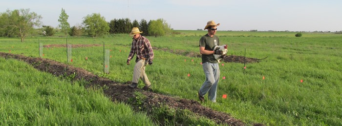Hayden and Ernest walk along newly planted berm, where, in 10-15 years, a fruit overstory will shade the same place.