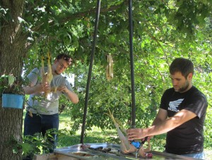 interns conner &dan chicken harvesting